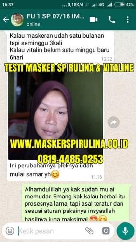 testi masker spirulina dan vitaline